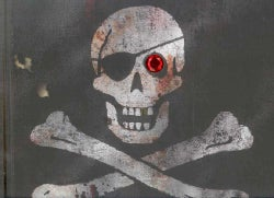 Pirates (Hardcover)