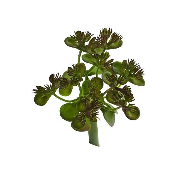 Sedum Succulent Artificial Plant (Set of 12) 31349578