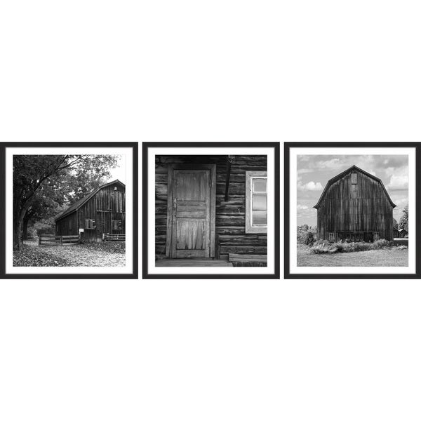Pieces of History Triptych 31350798