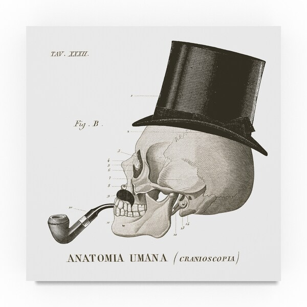 Sue Schlabach 'Dandy Bones II' Canvas Art 31388292