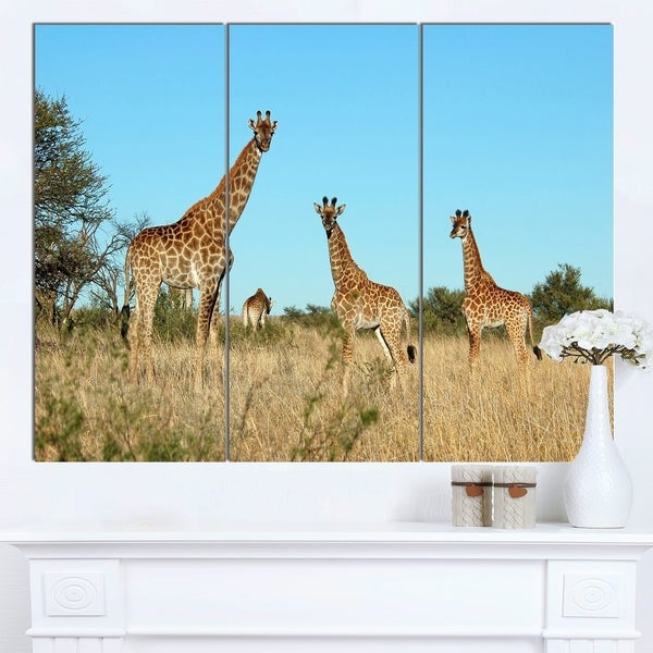 Designart 'Giraffe Family in Africa' African Canvas Artwork - brown 31453254