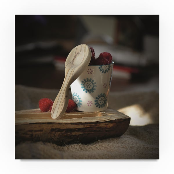 Christine Sainte-Laudy 'Wooden Ribs' Canvas Art 31799727