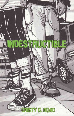 Indestructible (Paperback)