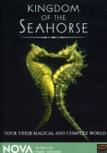 Kingdom of the Seahorse (DVD)
