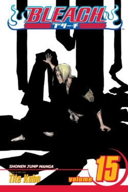 Bleach 15 (Paperback)