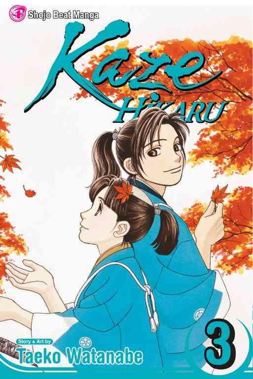 Kaze Hikaru 3 (Paperback)