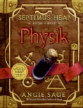 Physik (Hardcover)