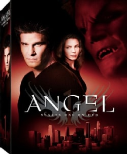 Angel Season 1 (DVD)