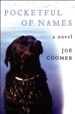 Pocketful of Names (Paperback)
