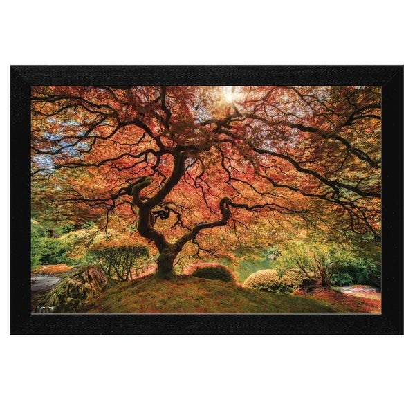 """First Colors of Fall"" by Moises Levy, Ready to Hang Framed Print, Black Frame 35427426"