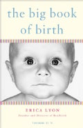 The Big Book of Birth (Paperback)