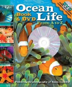 Ocean Life: Anemone to Zebra Fish