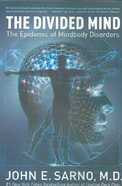 The Divided Mind: The Epidemic of Mindbody Disorders (Paperback)