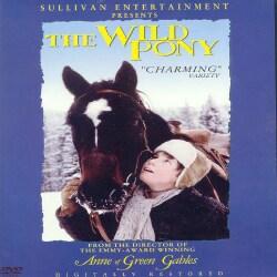 The Wild Pony (DVD)