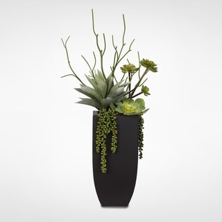 Botanical Succulent Variety in a Tall Black Modern Metal Planter
