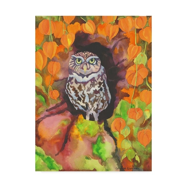 Carissa Luminess 'Owl With Asian Lanterns' Canvas Art 36715216