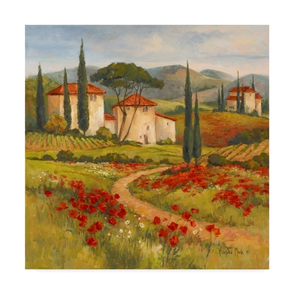 Barbara Mock ' Tuscan Dream' Canvas Art