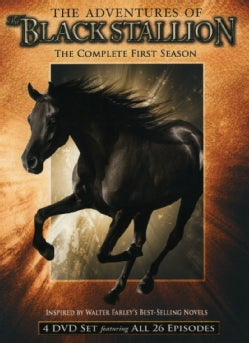 The Adventures of the Black Stallion Vol 1: Season 1 (DVD)