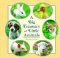 A Big Treasury of Little Animals (Hardcover)