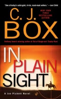 In Plain Sight (Paperback)