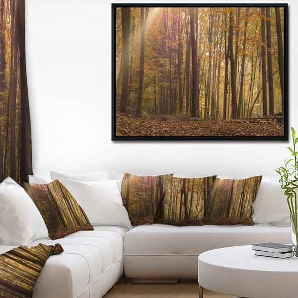 Designart 'Dense Forest in Rays of Rising Sun' Forest Framed Canvas Art Print 37207333