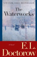 The Waterworks (Paperback)
