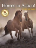 Horses in Action: A Poster Book (Paperback)