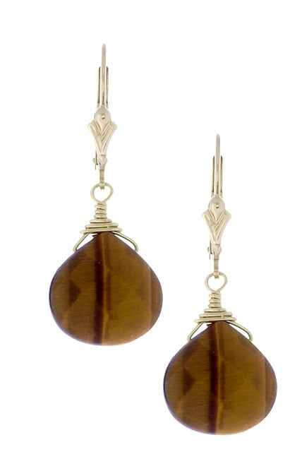 Charming Life 14K Goldfill Tiger's Eye Briolette Gemstone Earrings