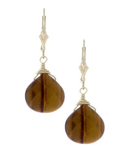 Charming Life Tiger's Eye Briolette Gemstone Earrings