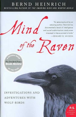 Mind of the Raven: Investigations and Adventures With Wolf-birds (Paperback)