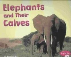 Elephants and Their Calves (Paperback)