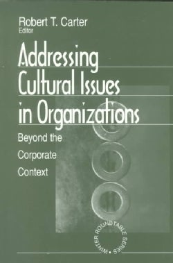 Addressing Cultural Issues in Organizations: Beyond the Corporate Context (Paperback)