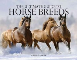 Ultimate Guide to Horse Breeds (Paperback)