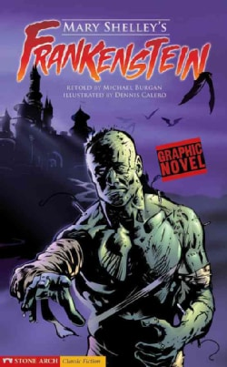 Mary Shelley's Frankenstein: Graphic Novel (Hardcover)