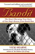 Bandit: The Heart-Warming Story of One Dog's Rescue from Death Row (Paperback)