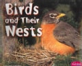 Birds and Their Nests (Paperback)