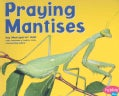 Praying Mantises (Paperback)
