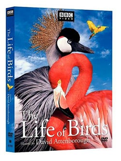 Life of Birds (DVD)
