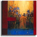 Iris Sunrise by Don Li-Leger Stretched Canvas Art