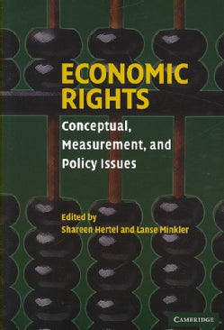 Economic Rights: Conceptual, Measurement, and Policy Issues (Paperback)