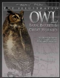 The Illustrated Owl: Barn, Barred, & Great Horned: The Ultimate Reference Guide for Bird Lovers, Woodcarvers, and... (Paperback)