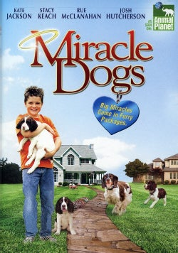 Miracle Dogs (DVD)