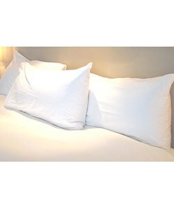 Allergy Free Standard-size Pillow Protector (Set of 2)