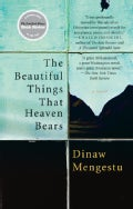 The Beautiful Things That Heaven Bears (Paperback)