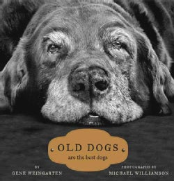 Old Dogs: Are the Best Dogs (Hardcover)