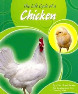 The Life Cycle of a Chicken (Paperback)