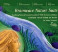 Dr. Jeffrey Thompson - Brainwave Nature Suite