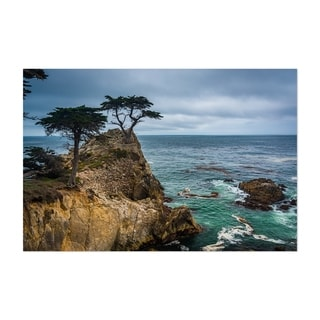Noir Gallery Lone Cypress 17 Mile California Unframed Art Print/Poster