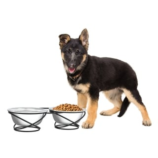 Petmaker 40-ounce Each 2-bowl Stainless Steel Elevated Feeding Station with Decorative Stand for Dogs and Cats