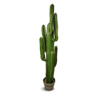 Euphorbia Artificial Plant
